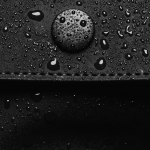 Rains Profile Image
