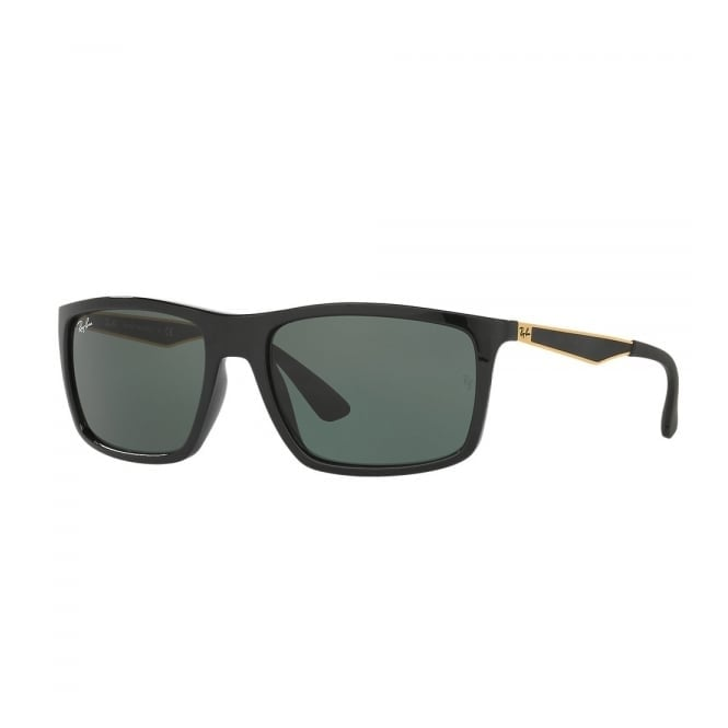 c418f3ae12e Ray-Ban Black   Gold RB4228 Sunglasses